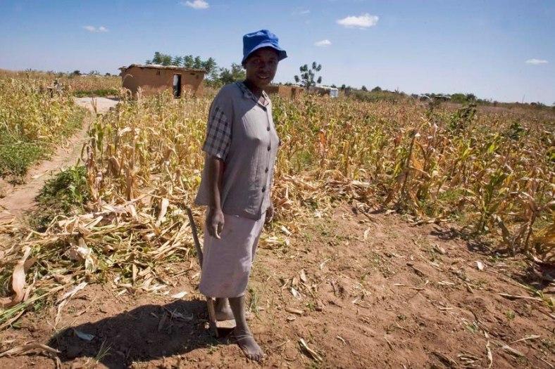 drought-Zimbabwe